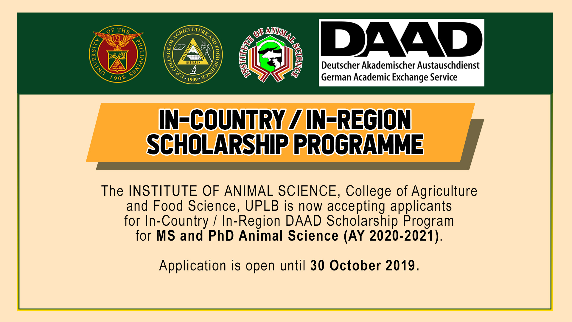 In-Country/In-Region DAAD Scholarship Program